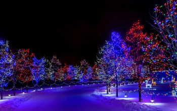 street,winter,holiday,merry christmas,lights,snow,trees,Happy new year