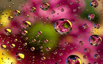 colors,bubbles,background,colorful,Abstract,Floral,пузыри,абстракция