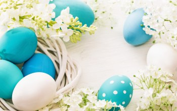 spring,яйца,Весна,цветы,happy,eggs,Easter,decoration
