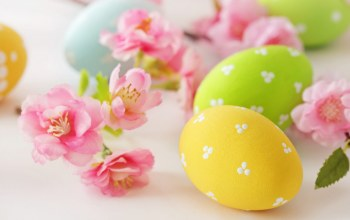 Easter,delicate,eggs,цветы,яйца