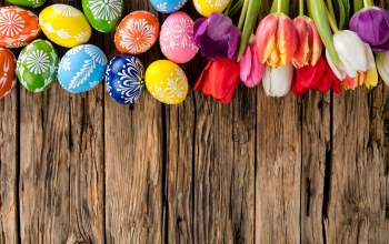 wood,colorful,happy,holiday,яйца,eggs,spring,tulips,Easter