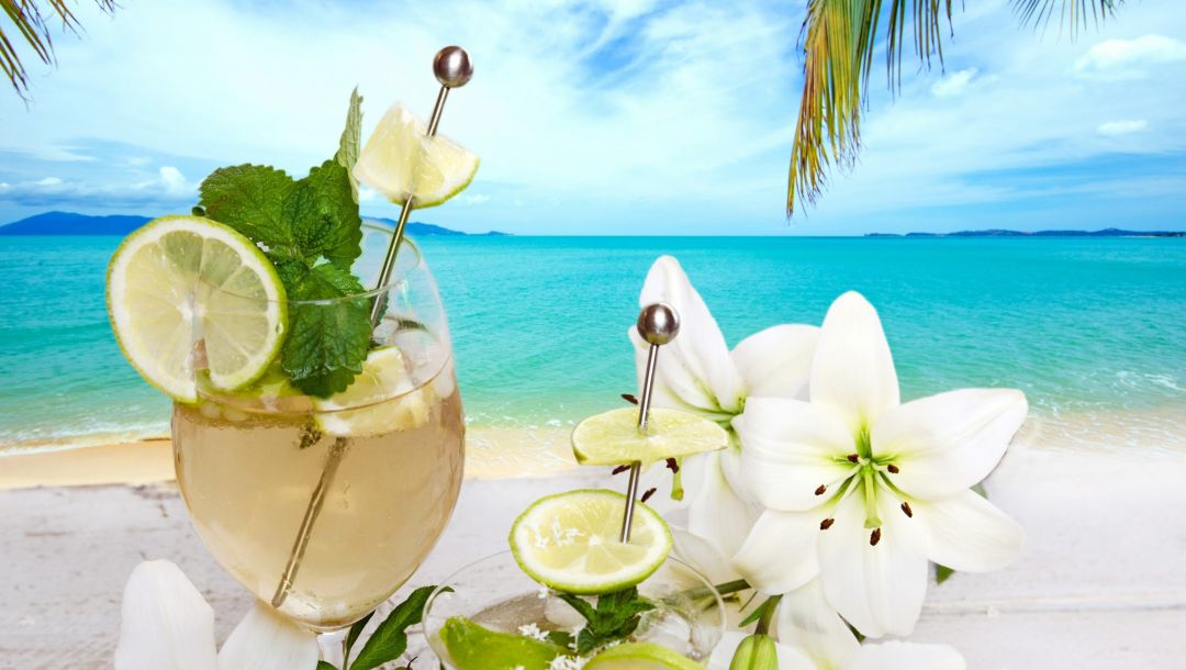 palms,tropical,cocktail,drink,summer,напиток,beach,fruit