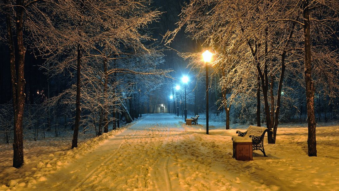 winter snowy park,Road,benches,Romantic evening,bench,park,beautiful scene