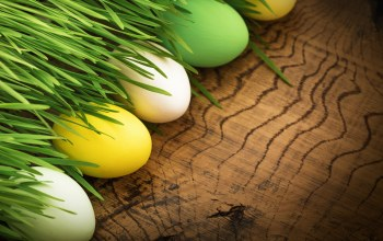 Easter,spring,decoration,цветы,яйца,happy,eggs