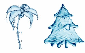 Creativity,water,Summer and winter,palm tree,drawing,drops,fir-tree,splash,spruce