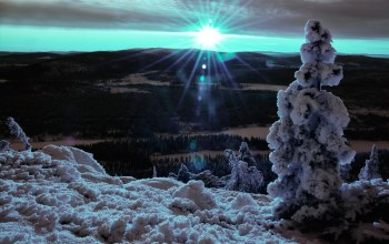 Lapland dream