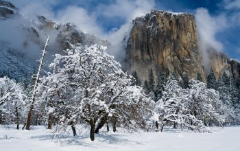 el capitan,гора эль-капитан,yosemite national park,california