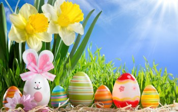 яйца,happy,Easter,eggs,sunshine,spring,Весна