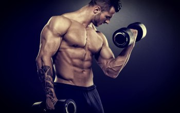 Barbell,bodybuilder,Muscle,weight training