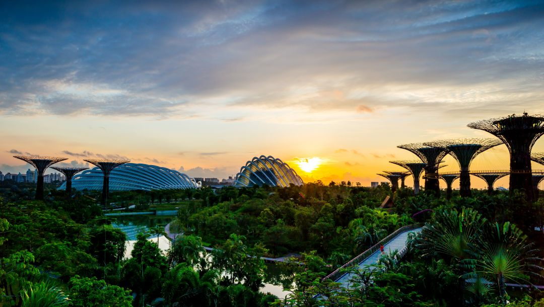 gardens by the bay,речка