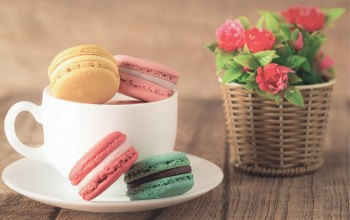 макарун,sweet,Macaron,coffee,cookies,colorful,cup,almond