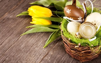 eggs,Easter,spring,tulips,яйца,decoration,цветы,happy