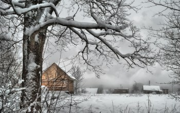 россия,winter,snow,trees,frost,Мороз,russia,village
