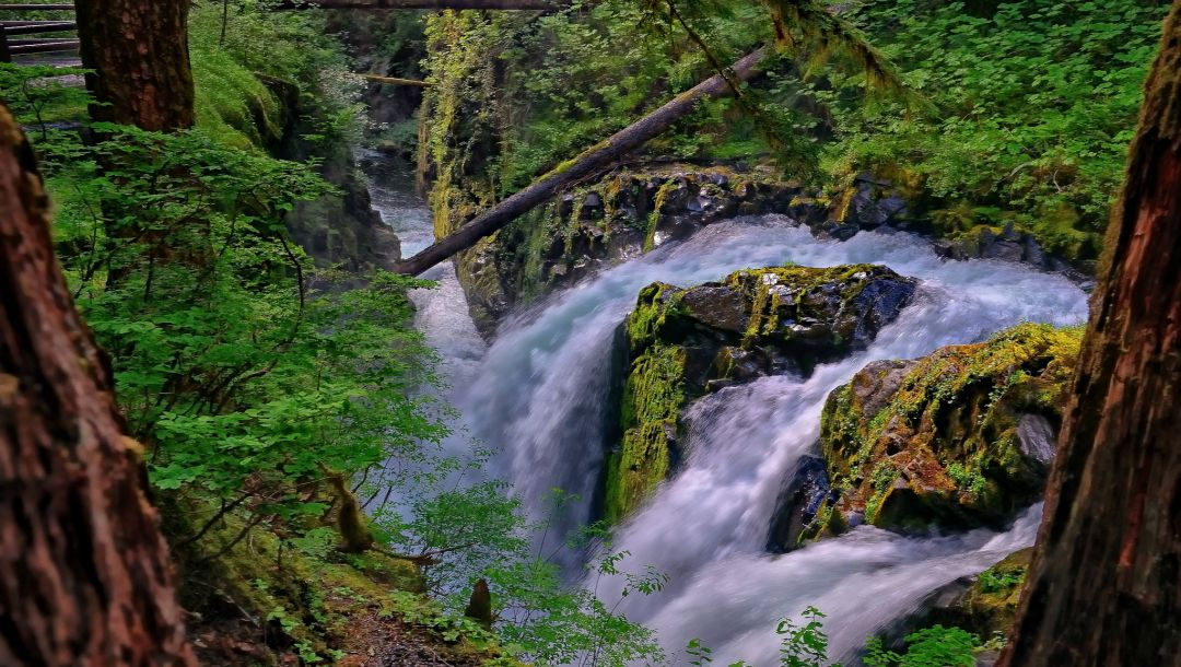 olympic national park,Sol duc falls,washington,sol duc river
