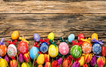 eggs,holiday,spring,яйца,wood,colorful,tulips,happy,Easter