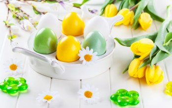 eggs,Daisies,яйца,tulips,Easter