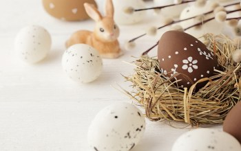 цветы,happy,willow,Easter,Весна,decoration,spring,яйца,eggs