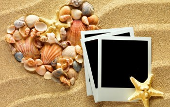 Seashells,photo frame,texture,сердце,sand,starfishes,heart,ракушки