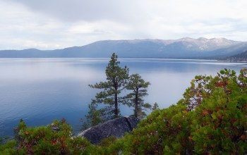 Облака,Lake tahoe,nevada,Растения,сша