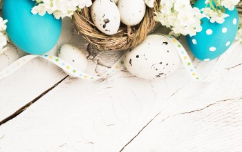 Easter,happy,spring,яйца,decoration,eggs,цветы,Весна