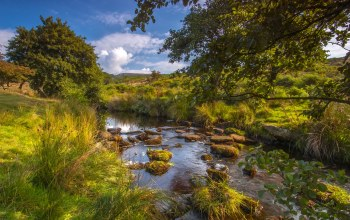 longshaw estate,peak district national park,derbyshire,Burbage brook,padley gorge,england