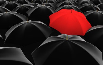 many,Red,umbrella