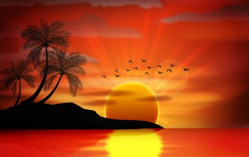 island,Sunset,vector,tropical,paradise,palms