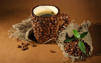 кофе,coffee beans,зерна,leaves,cup of coffee,coffee,кружки