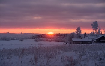 sunrise,winter,morning,snow