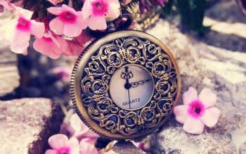 dial,switch,time,цветы,Весна,spring,clock