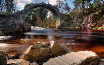 scotland,carrbridge,Пейзаж