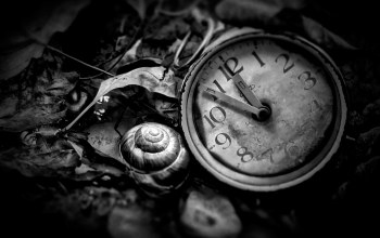 time is now,black and white