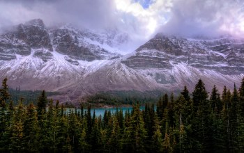 canada,alberta,Icefields parkway