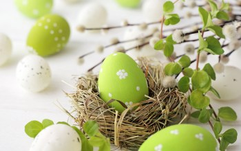 decoration,willow,eggs,яйца,happy,Easter,spring,цветы