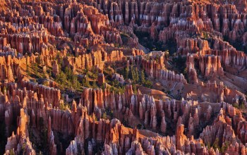 сша,скалы,Bryce canyon national park,юта