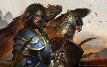 мужчина,wow,world of warcraft,Человек,Lothar anduin