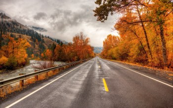 trees,mountain,осень,river,Road,autumn