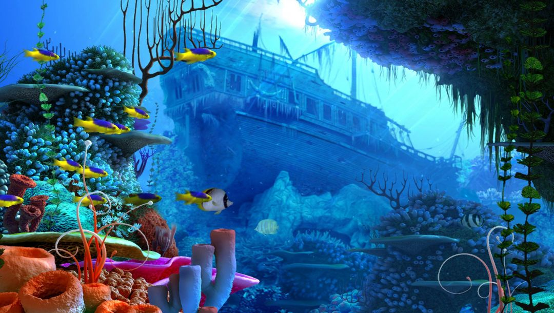 coral,boat,marine transport,under the sea