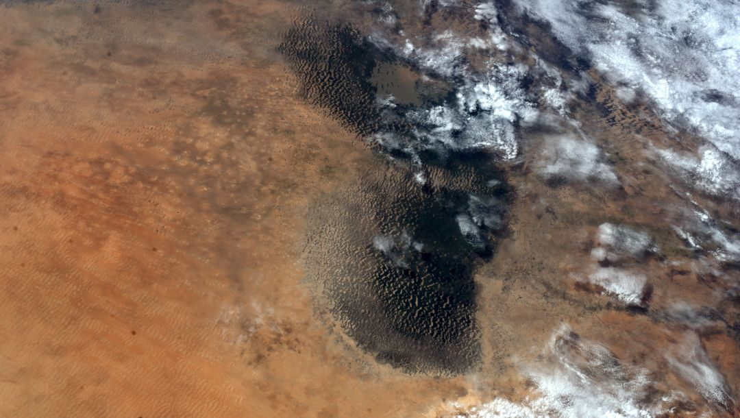 chad lake,desert,Earth from space