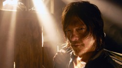 daryl dixon,the walking dead,norman reedus