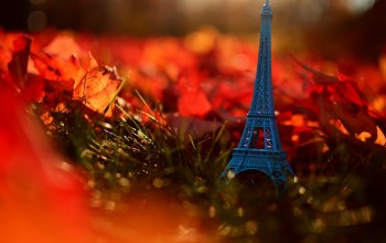 осень,leaves,autumn,grass,france,paris,Eiffel tower