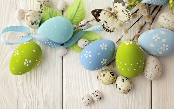 willow,eggs,happy,яйца,Easter,decoration,spring,цветы