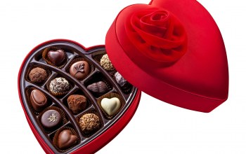 chocolate,flower,heart,holiday,cream,шоколад,candy,Red,I love you,rose