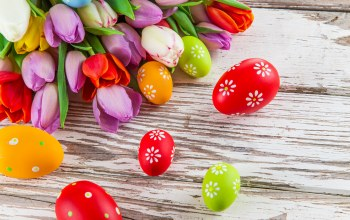 яйца,tulips,цветы,Easter,eggs,colorful,spring