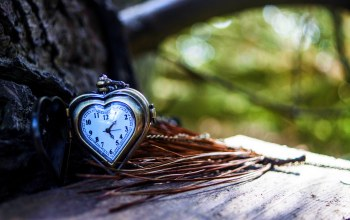heart,autumn,clock,сердце
