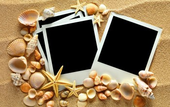 photo frame,Seashells,starfishes,texture,sand,ракушки