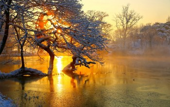 ice,colors,sky,snow,Sunset,scenery,tree,landscape,clouds,winter,view,season