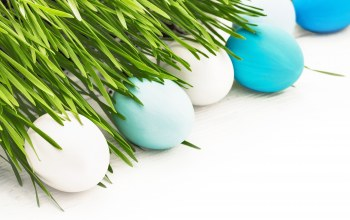 spring,happy,eggs,decoration,яйца,цветы,Easter
