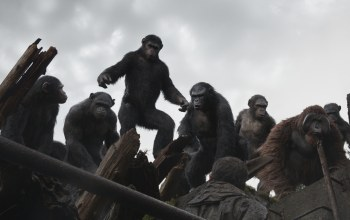 Планета обезьян: революция,dawn of the planet of the apes,цезарь