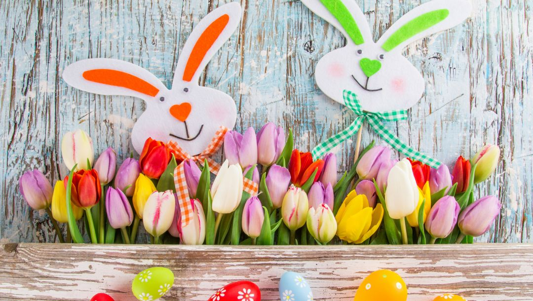 Easter,spring,tulips,eggs,colorful,цветы,яйца